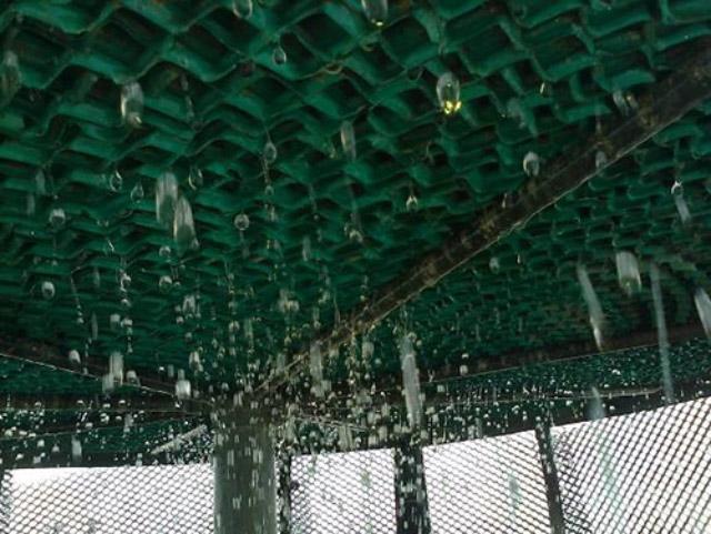 Tháp tản nhiệt nước Kumisai KMS 225RT