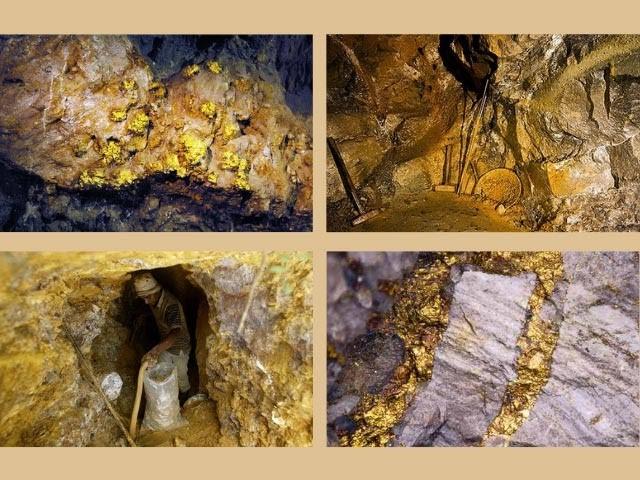 Máy dò kim loại dò vàng được